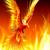 Phoenix_on_Fire