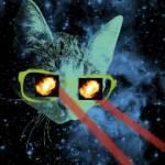 fatblackcat