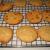 icookiesi